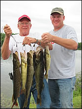 smallmouth bass and walleye